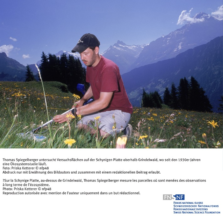 Thomas Spiegelberger untersucht Versuchsflächen auf der Schynigen Platte oberhalb Grindelwald, wo seit den 1930er Jahren eine Ökosystemstudie läuft.