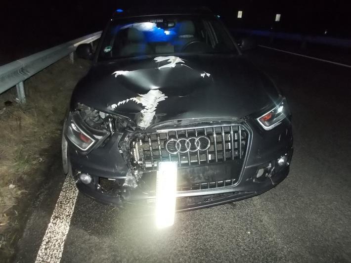 POL-PDLD: Landau - Unfall auf der A 65