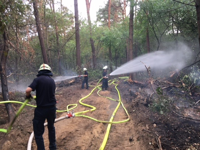 Waldbrandeinsatz in Straelen (Bachmann)