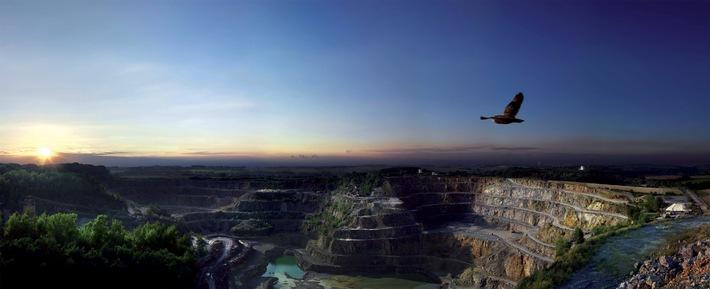 Tag des offenen Steinbruchs am 15. und 16. Mai (mit Bild) / Der Artenvielfalt auf der Spur