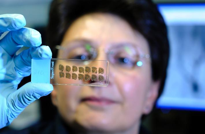 Biologikatherapie in Zeiten biologischer Nachahmerprodukte: Noch kaum Erfahrungswerte zur Behandlung mit Biosimilars