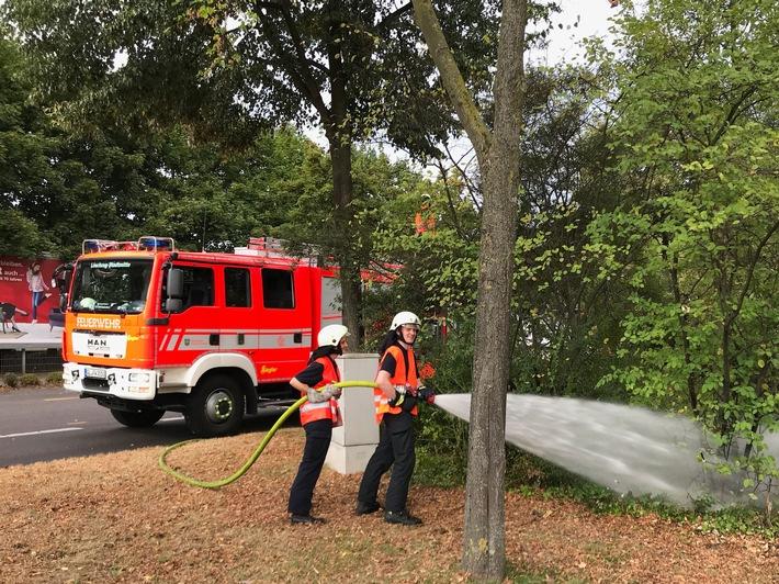 Die Feuerwehr Bergisch Gladbach bewässert die Bäume und Pflanzen in der Stadt