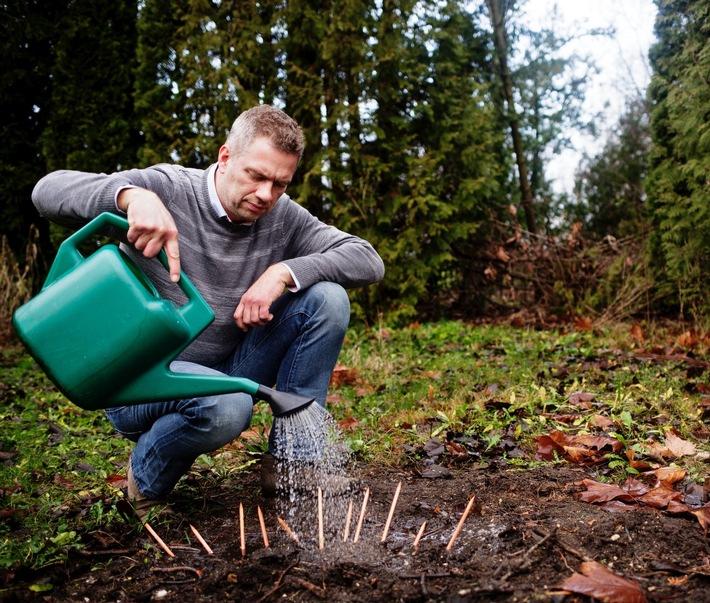 Umweltschutz und Nachhaltigkeit einfach erklärt / Blei- und Buntstifte, die sich in eine Pflanze verwandeln, sind großer Erfolg in Deutschland
