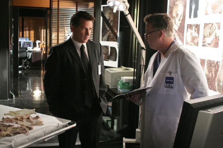 """""""CSI"""" meets """"Without a Trace"""" - am Samstag, 27. Juni 2009, um 20.15 Uhr bei kabel eins als Deutschland-Premiere"""