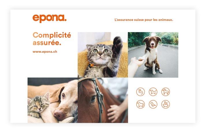 """Epona, L'assurance suisse pour les animaux. Texte complémentaire par ots et sur www.presseportal.ch/fr/nr/100060146 / L'utilisation de cette image est pour des buts redactionnels gratuite. Publication sous indication de source: """"obs/Epona/"""""""
