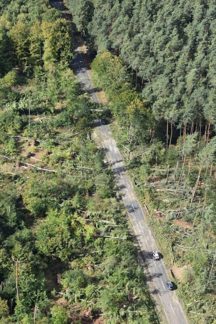 Die von umgestürzten Bäumen blockierte Strecke zwischen Babenhausen und Schaafheim am Montagnachmittag.