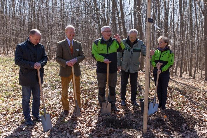 Baumpflanzung bei der Eröffnung: Dr. Volker Schaedel, Dr. Hans-Adam von Schultzendorff, Jan Klüßendorf (Forstamtsleiter Bad Berka), Jörn Heinrich Ripken und Birgit Keller
