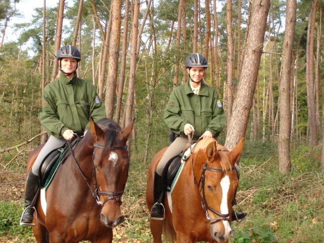 POL-SHDD: 4 Polizeireiter im Viernheimer Wald und Sportgebiet West auf Streife