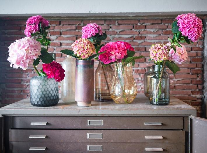 Hortensien in Vasen für lebendigen Look - Für echtes Sommer-Feeling: die Hortensie als Schnittblume
