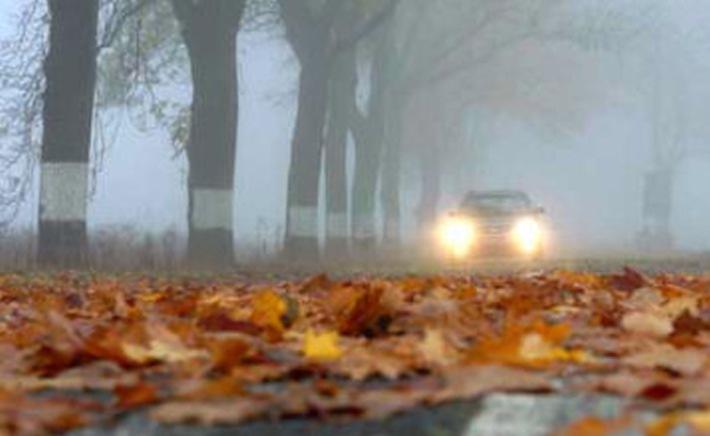 Laub auf den Straßen und Nebel - spätestens jetzt sollten Autofahrer vom Gas gehen und einen Gang zurückschalten...