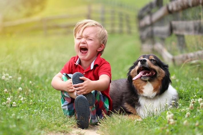 Aua, das tut weh! / Schmerzbehandlung ist aktiver Tierschutz