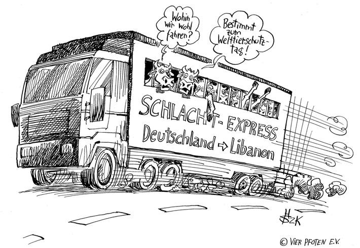Welttierschutztag: Die Zahl der qualvollen Langstreckentransporte steigt aufgrund der EU-Subventionspraxis