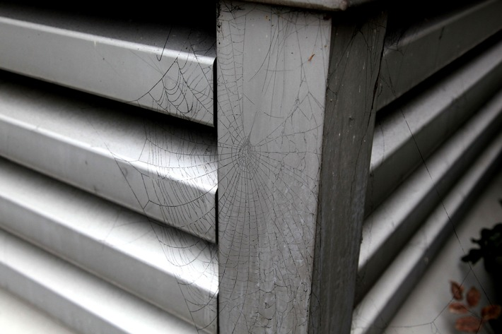 Schnappschuss. Wie rußig der Brandrauch tatsächlich war, zeigt dieses Spinnennetz an einer Abluftöffnung der Tiefgarage. Foto: Mike Filzen