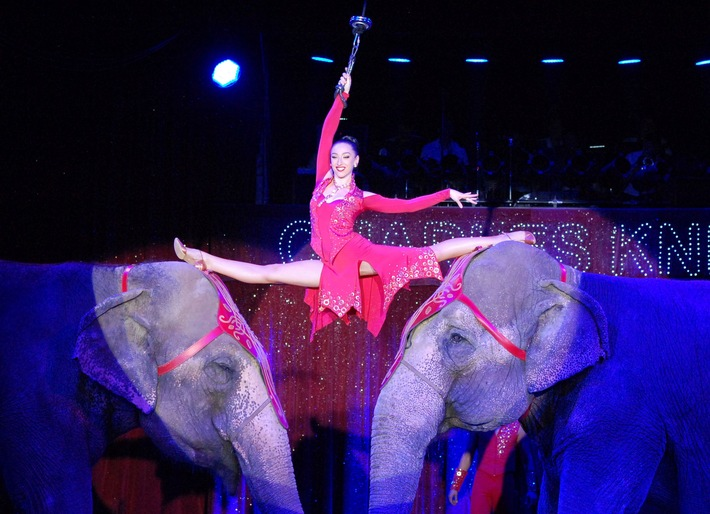 """Leider hat die ARD bei der Übertagung des Zirkus-Festivals von Monte Carlo die liebevolle Elefantendressur der Familie Errani herausgeschnitten. Weiterer Text über ots und www.presseportal.de/nr/103332 / Die Verwendung dieses Bildes ist für redaktionelle Zwecke honorarfrei. Veröffentlichung bitte unter Quellenangabe: """"obs/Aktionsbündnis """"Tiere gehören zum Circus""""/Dirk Candidus"""""""