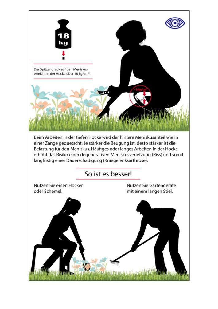 """Die Meniskusbelastung bei der Gartenarbeit und wie man diese vermeiden kann.  / Gartenarbeit ohne Reue - 8 Tipps von den Orthopäden der AGA, wie Sie Ihre Kniegelenke schonen können.Foto: AGA - Gesellschaft für Arthroskopie und Gelenkchirurgie. Weiterer Text über ots und www.presseportal.de/nr/113776 / Die Verwendung dieses Bildes ist für redaktionelle Zwecke honorarfrei. Veröffentlichung bitte unter Quellenangabe: """"obs/AGA Gesellschaft für Arthroskopie und Gelenkchirurgie"""""""