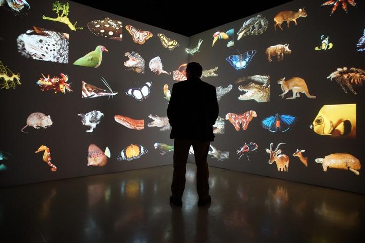"""Atemberaubende Aufnahmen: """"Photo Ark mit Joel Sartore"""" begleitet den Fotografen auf seiner Mission zur Rettung der Tiere"""