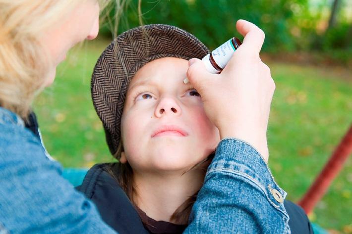 Schmarotzer macht das Auge fit: wie Augentrost das Auge reguliert (mit Bild)