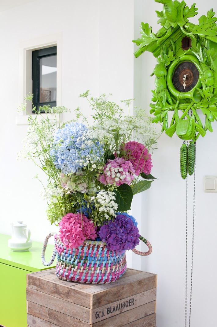farbenvielfalt in der vase verwandlungsk nstlerin hortensie mit bild presseportal. Black Bedroom Furniture Sets. Home Design Ideas