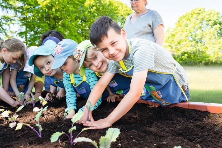 """EDEKA Stiftung: Die Weichen für eine bewusste Ernährung werden schon im Kindesalter gestellt. Mit dem Erfolgsprojekt """"Gemüsebeete für Kids"""" erreicht die EDEKA Stiftung 2019 über 190.000 Kinder. Weiterer Text über ots und www.presseportal.de/nr/51907 / Die Verwendung dieses Bildes ist für redaktionelle Zwecke honorarfrei. Veröffentlichung bitte unter Quellenangabe: """"obs/EDEKA ZENTRALE AG & Co. KG/EDEKA Stiftung/U.Schaarschmidt"""""""
