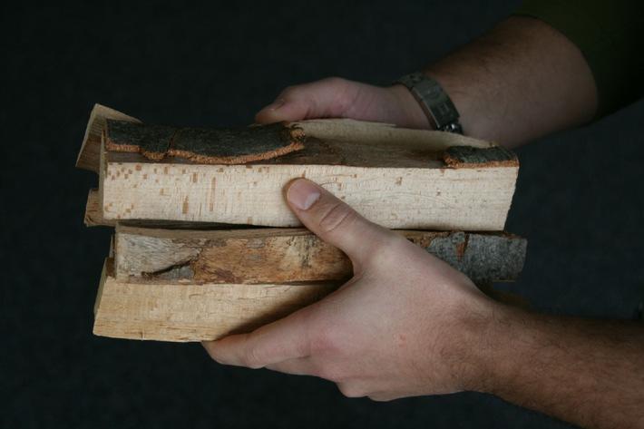 Holzenergie Schweiz: Heizen mit 2 Kilo Holz pro Tag