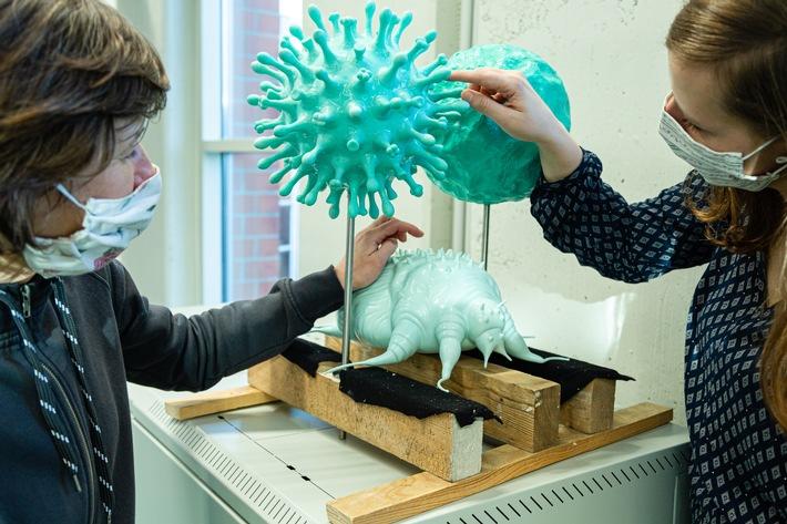 Große Modelle veranschaulichen Krankheitserreger, wie Bakterien und Viren, im neuen Ausstellungsbereich