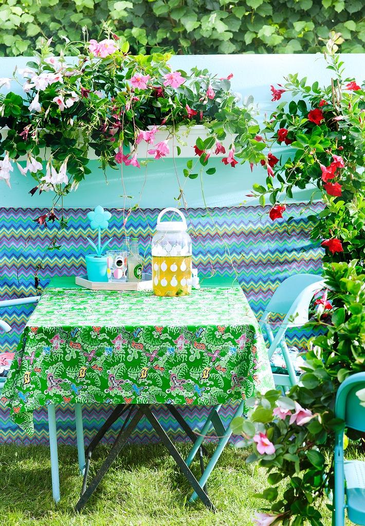 Mit Indischem Blumenrohr, Mandevilla und Korallenstrauch wird's farbenfroh / Willkommen im Sommergarten Kunterbunt