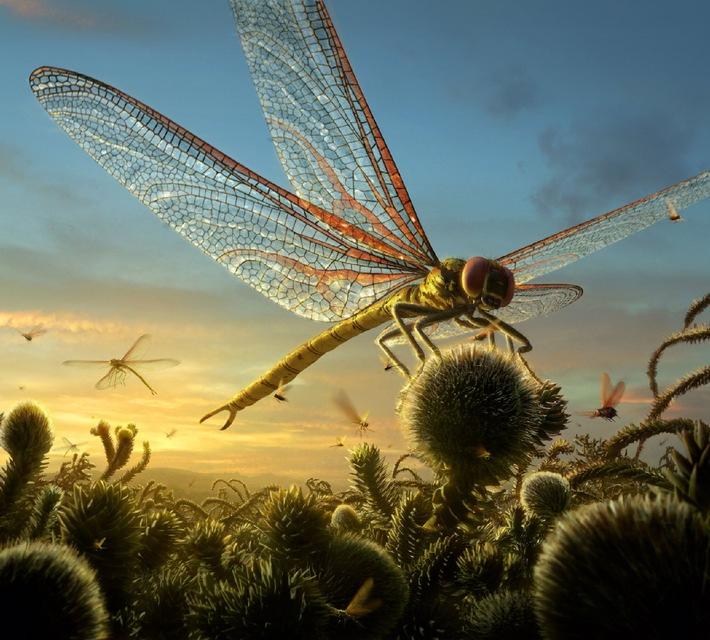 """Was lebte eigentlich vor den Dinos? """"Die Ahnen der Saurier"""" am Donnerstag auf ProSieben. Im brandneuen, finalen Teil seiner preisgekrönten Urzeit-Trilogie wendet sich """"Dinosaurier""""-Macher Tim Haines dem ersten großen Erdzeitalter zu - der Zeit, bevor T-Rex & Co. die Erde beherrschten. Es war eine Welt voller fremdartiger und monströser Kreaturen: riesige Skorpione, Riesenspinnen und gewaltige Insekten kämpfen um die Vorherrschaft in der Evolution des Planeten ... ProSieben zeigt die spektakuläre Koproduktion """"Die Ahnen der Saurier: Im Reich der Urzeitmonster"""" am Donnerstag, den 02. Februar 2006, um 20.15 Uhr als Deutschland-Premiere.  Fotomotiv: Ein gigantischen Skorpion, Pterygotus, jagt einen kleinen Brontoscorpio. Dieses Bild darf nur bis 04. Februar 2006 honorarfrei für redaktionelle Zwecke im Rahmen der Programmankündigung, mit Copyrightvermerk verwendet werden. Nicht für Online. Spätere Veröffentlichungen sind nur nach Rücksprache und ausdrücklicher Genehmigung der ProSieben Television GmbH möglich. Die Fotos dürfen nicht an Dritte weitergeleitet werden. Weitere Fotos erhalten Sie unter Tel. 089/9507-1584. Foto: © BBC 2005"""