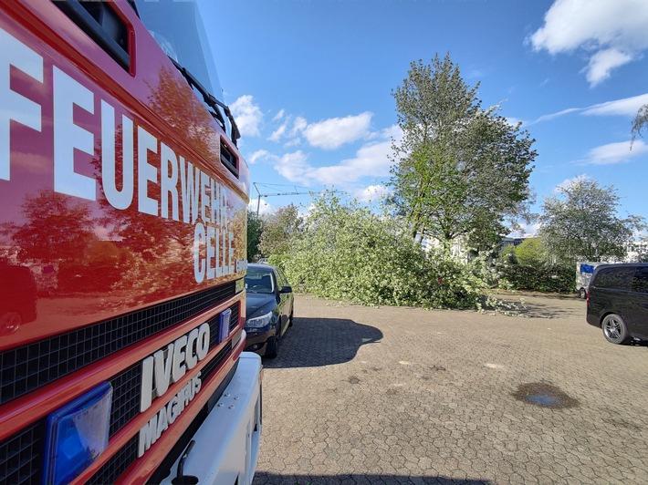 FW Celle: Wetterbedingte Einsätze am Dienstag und Mittwoch!