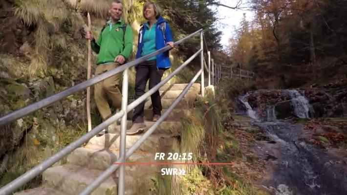 Expedition In Die Heimat Traum Wanderwege Am Rande Des Schwarzwalds Swr Fernsehen Presseportal