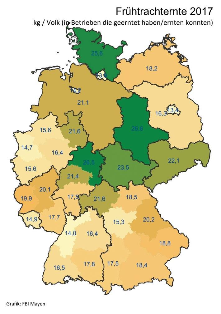Deutscher Imkerbund erwartet zufriedenstellendes Honigerntejahr