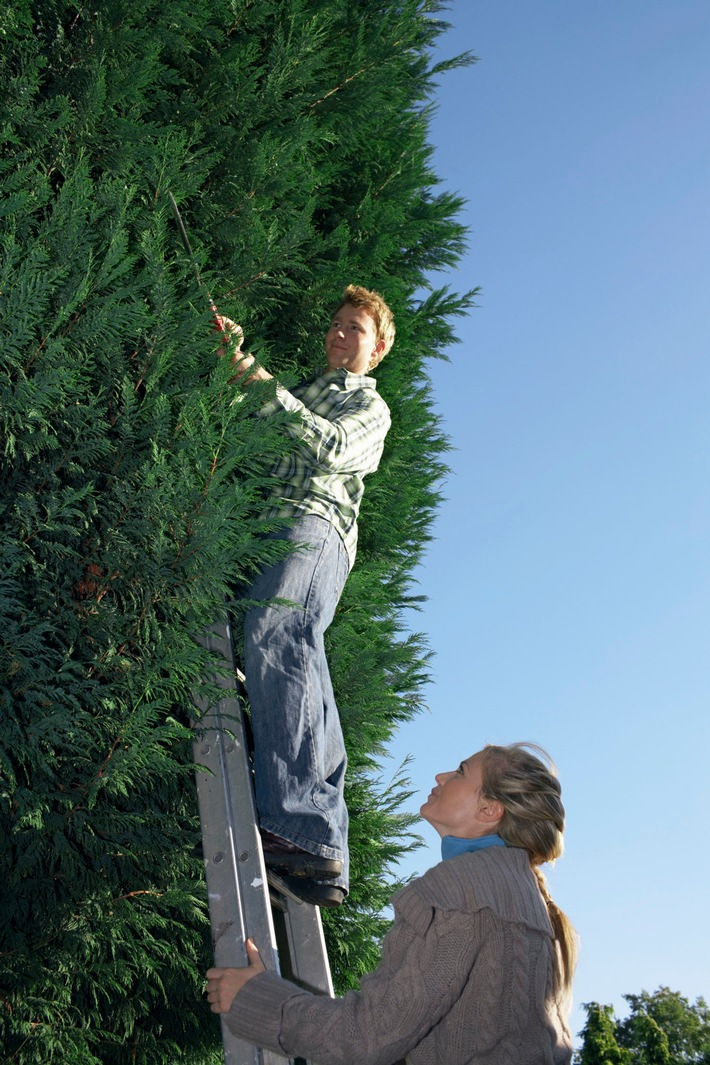 Garten gut gesichert winterfest machen / Derzeit werden Bäume und ...