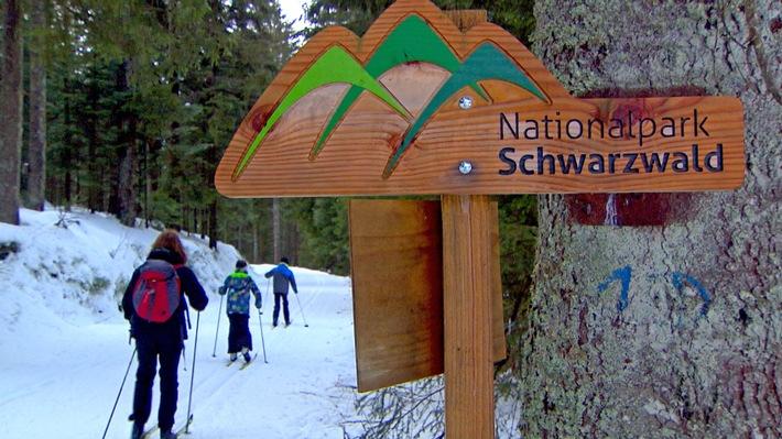 Nationalpark Schwarzwald: Entfaltung unter internationalem Label