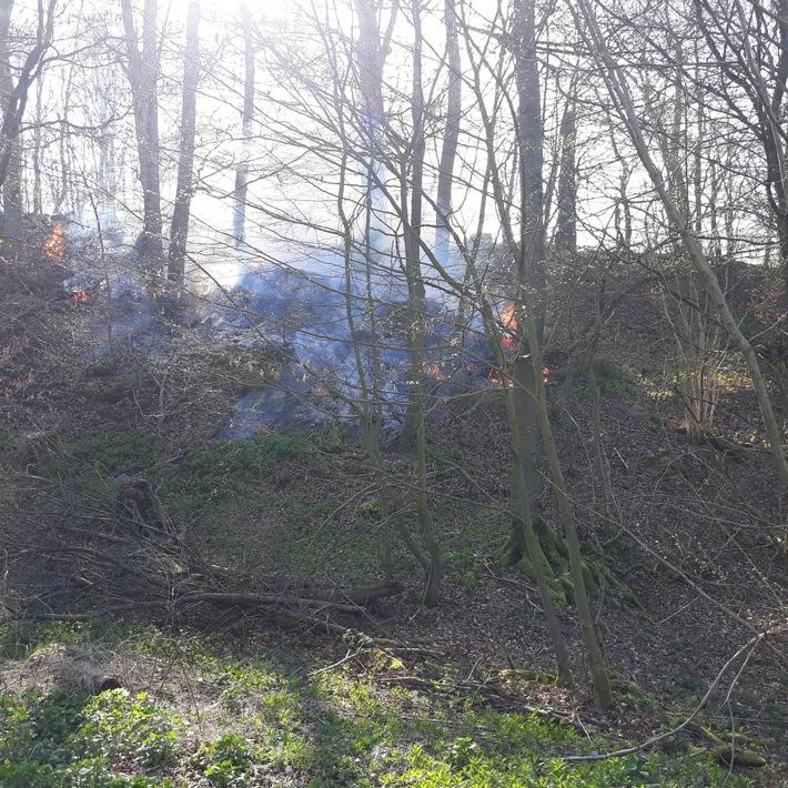 Flächenbrand Henkenbrink
