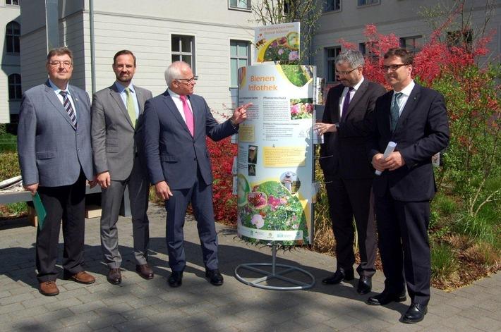 Deutscher Imkerbund beteiligt sich an neuer bundesweiter Bienen-Informationskampagne