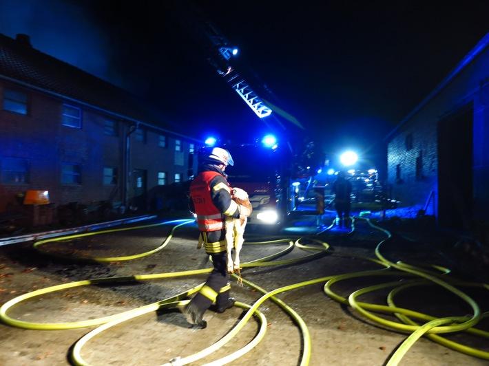 ca. 20 Kälber konnten vor den Flammen gerettet werden.