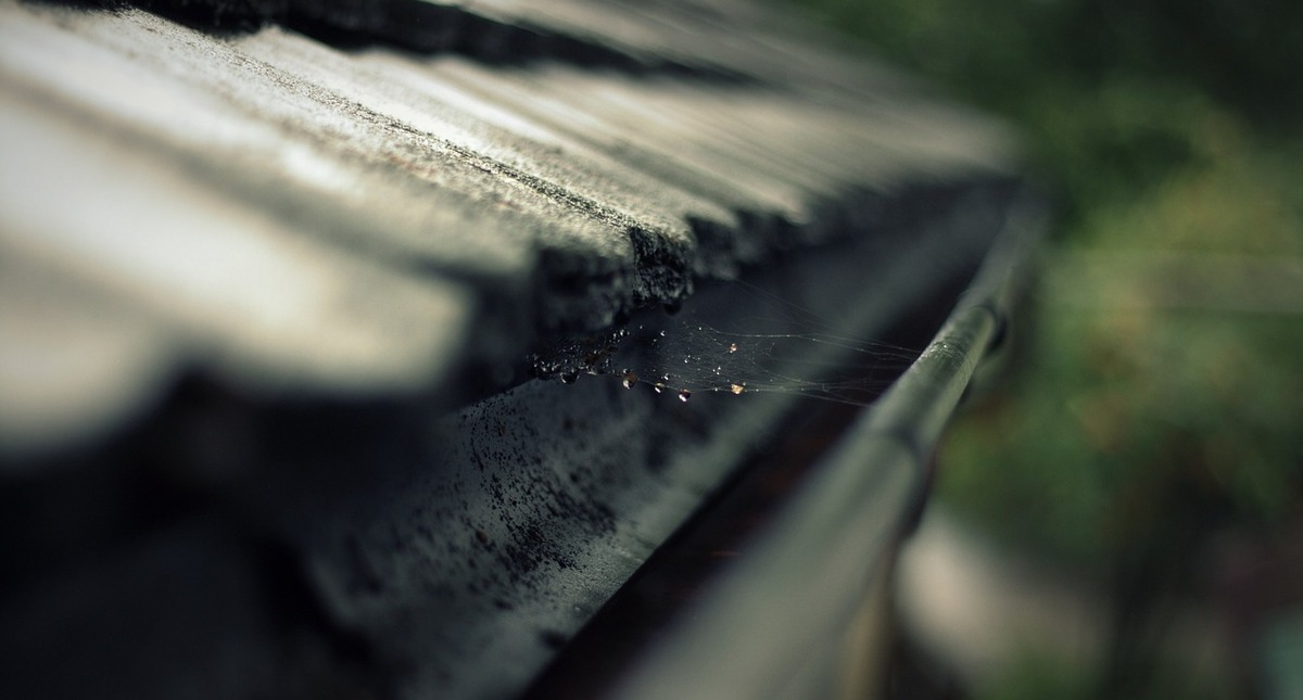 Gut bekannt ▷ Die Regenrinne reinigen - selbst sauber machen oder säubern LQ37