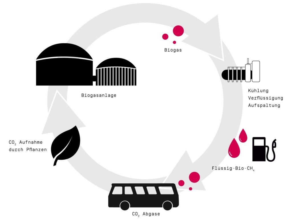 Kommunaler Nahverkehr auf dem Weg zur CO2-Neutralität / Mit dem nachhaltigen Kreislaufkonzept des Start-Ups CM Fluids lassen sich Nutzfahrzeuge zu klimaneutralen Verkehrsmitteln umrüsten