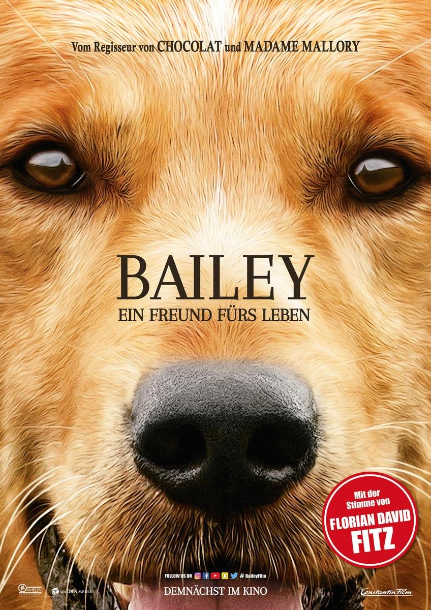 Bailey Ein Freund Fürs Leben Movie4k