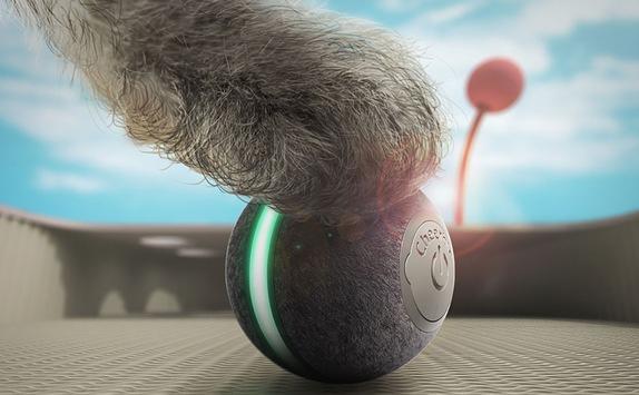 Ungewöhnliches Katzenspielzeug interaktiv und elektrisch kommt bei allen Samtpfoten super an