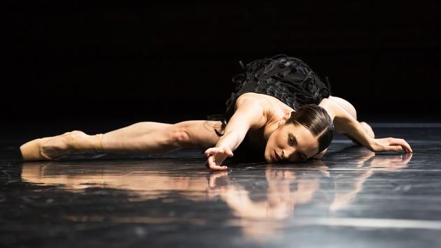 """Kunst lässt sich nicht aufhalten: 3sat zeigt Eric Gauthiers """"The Dying Swans Project"""""""