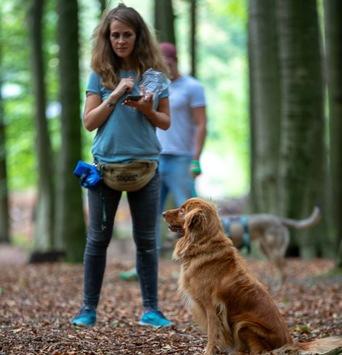 """Hundeschule Witten von Katharina Wolf sorgt auch """"unter Wölfen"""" für Furore"""