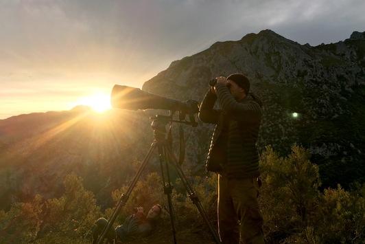 """""""Unterwegs in der Wildnis – Vincent Munier"""": Doku über preisgekrönten Tierfotografen in 3sat"""