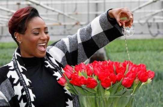 "Tulpe ""Edsilia"" benannt nach Edsilia Rombley / Moderatorin des Eurovision Song Contests 2021 mit eigener Tulpe geehrt"