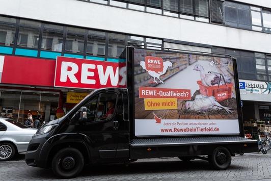 """Termin: Protest vor Rewe-Sitz in Teltow """"Rewe-Qualfleisch? Ohne mich!"""" am 20. Mai, 11 Uhr"""