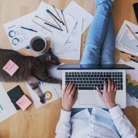 Arbeitnehmer geben Geheimnisse aus ihrem Leben im Heimbüro preis / 51 Prozent der im Heimbüro Arbeitenden sind der Meinung, dass ihr Arbeitsplatz ihren Anforderungen nicht in vollem Umfang entspricht