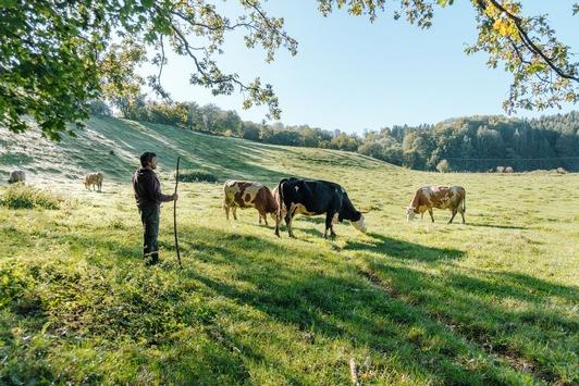 """Andechser Natur Bio-Milchbauern sind auch """"KlimaBauern"""" / Die Andechser Molkerei Scheitz initiiert das einzigartige Pilotprojekt mit dem Ziel der regionalen CO2-Bindung durch Humusaufbau"""