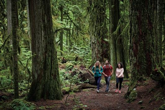 Columbia Hiking Sneaker SH/FT verschiebt Grenzen zwischen Stadt und Natur