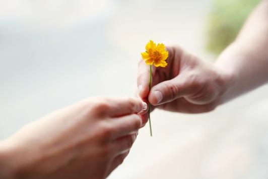 Hier bin ich traurig. Hier darf ich's sein! / Das Trostportal trosthelden.de bietet einen neuen Ansatz in der Hilfe für Trauernde – mit einem weltweit einzigartigen Trostpartner-Matching