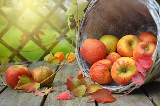 So kommen Sie gesund durch Herbst und Winter