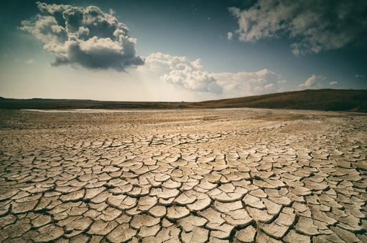 Universität Bremen unterzeichnet Erklärung zu G20: Klimaziele müssen Priorität haben
